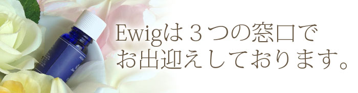 ewigは3つの窓口でお出迎えしております